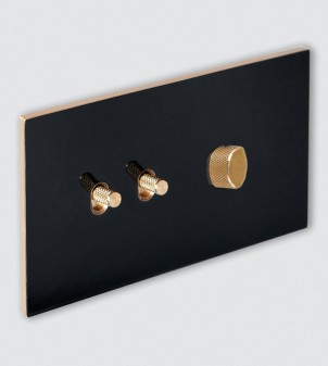 Plaque avec interrupteur à levier et variateur